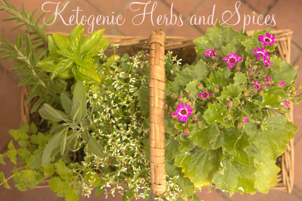 ketogenic-herbs-and-spices-cr2_